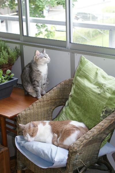 korgstol på balkongen