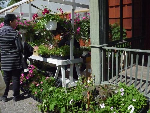 trädgårdsdag färgargården