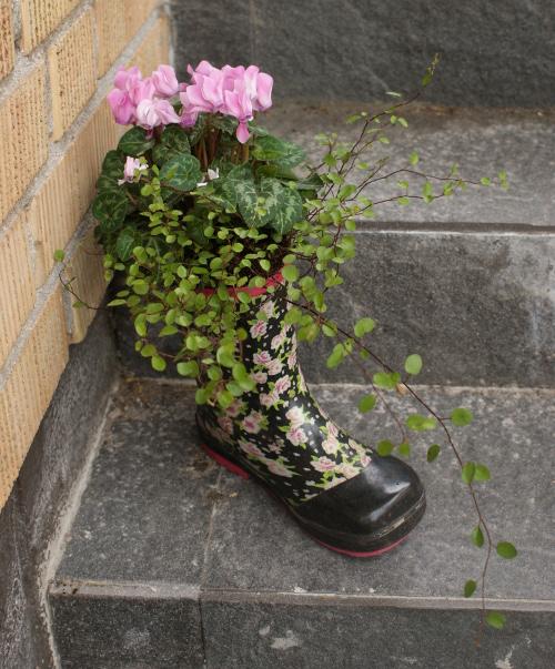 plantera i stövel