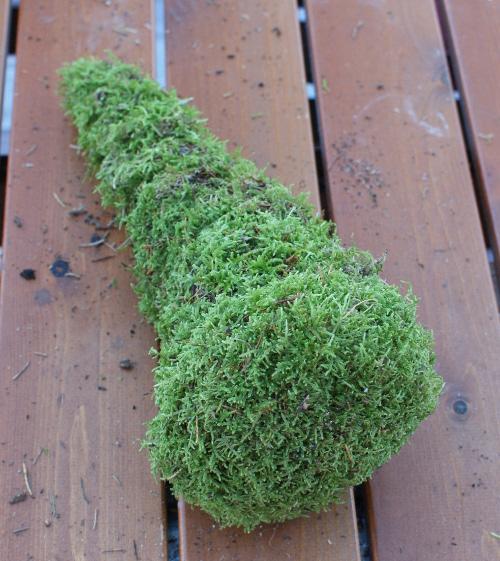mossträd