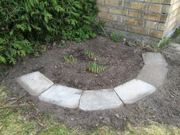 trädgård1b