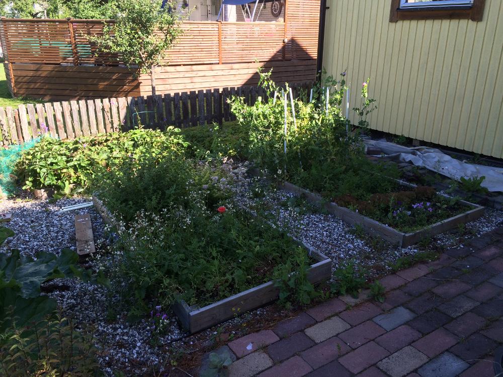 trädgårdsland1a