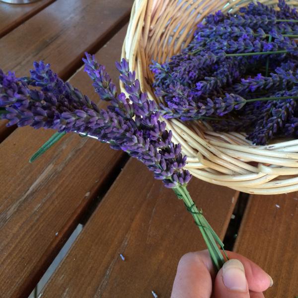 3c_Lavendelkrans