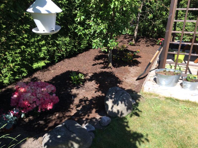 trädgårdsrabatt1b