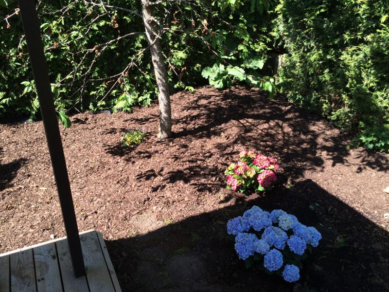 trädgårdsrabatt1c