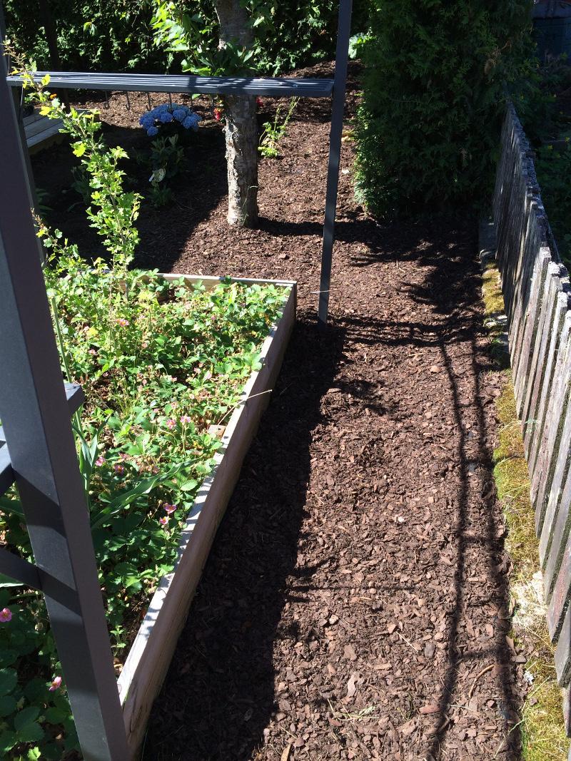 trädgårdsrabatt1d